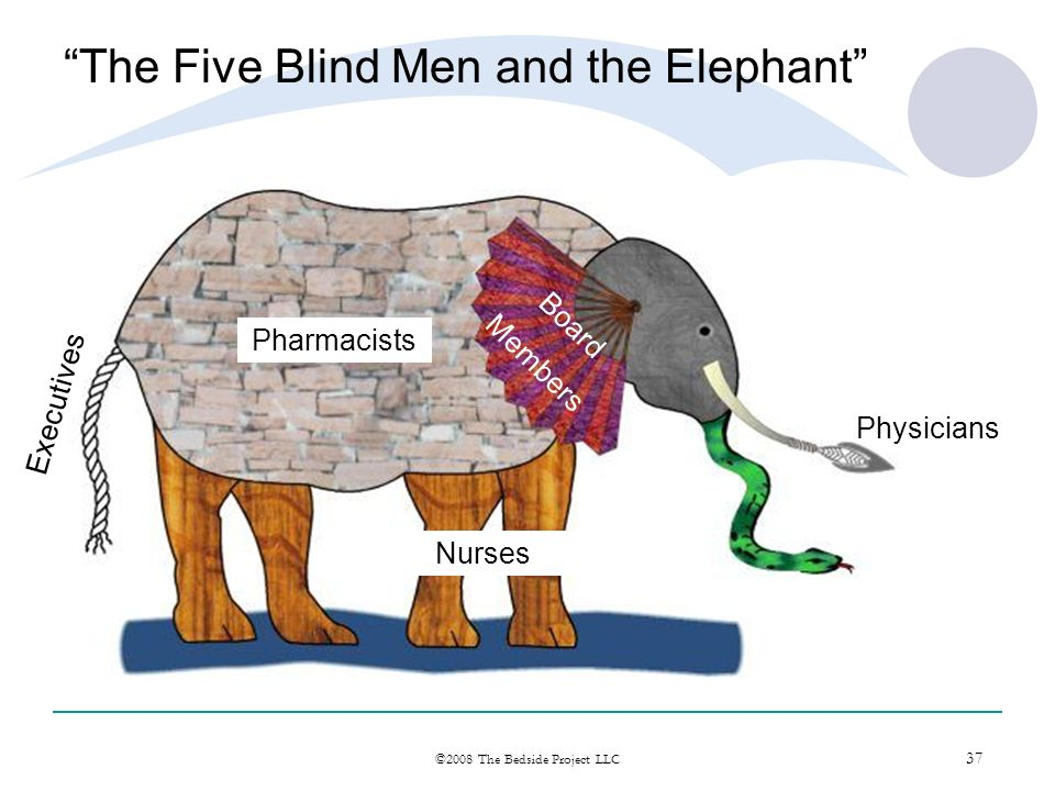 37 ©2008 The Bedside Project LLC The Five Blind Men and the Elephant Physicians Pharmacists Nurses Board Members Executives
