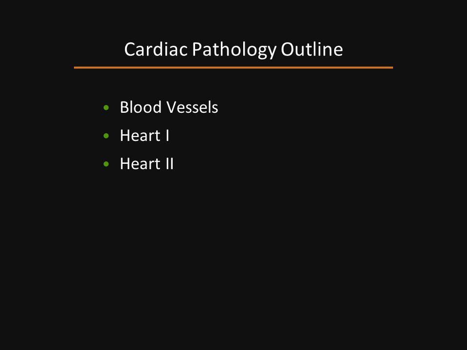Blood Vessels Heart I Heart II Cardiac Pathology Outline