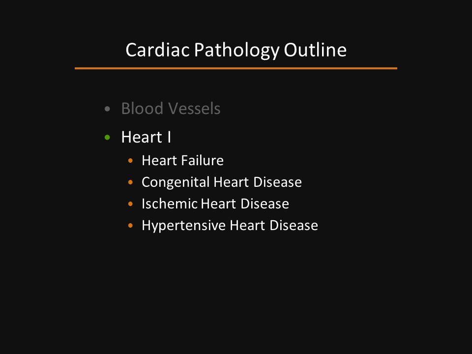 Blood Vessels Heart I Heart Failure Congenital Heart Disease Ischemic Heart Disease Hypertensive Heart Disease Cardiac Pathology Outline
