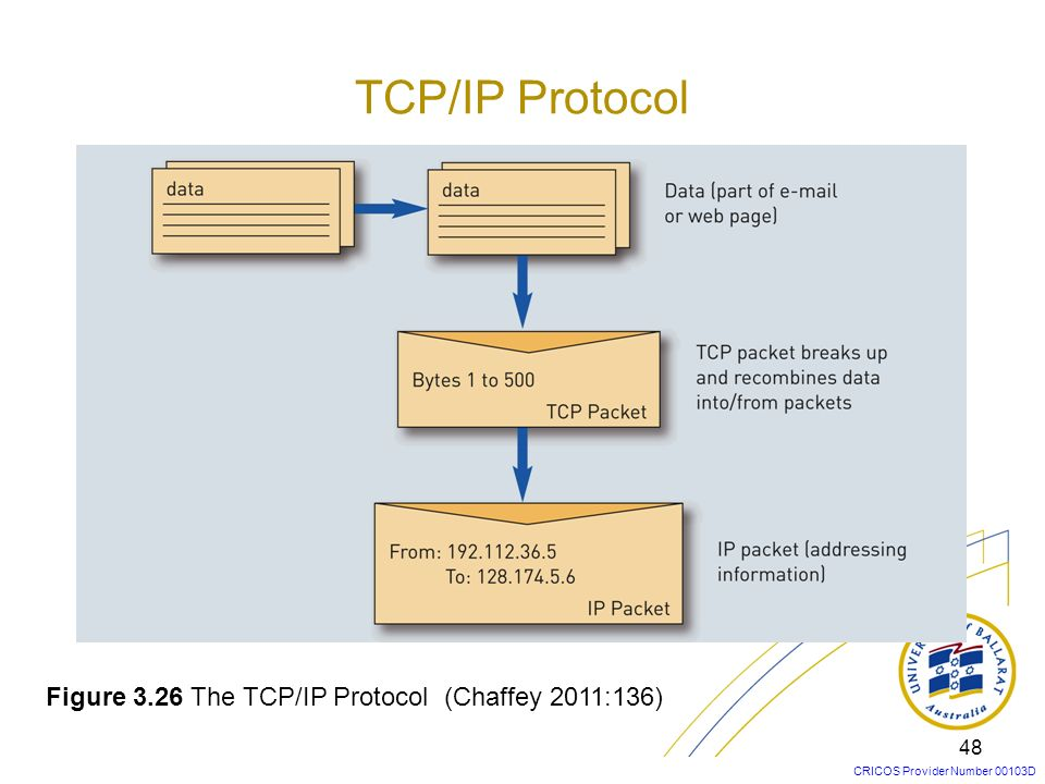 CRICOS Provider Number 00103D 48 Figure 3.26 The TCP/IP Protocol (Chaffey 2011:136) TCP/IP Protocol