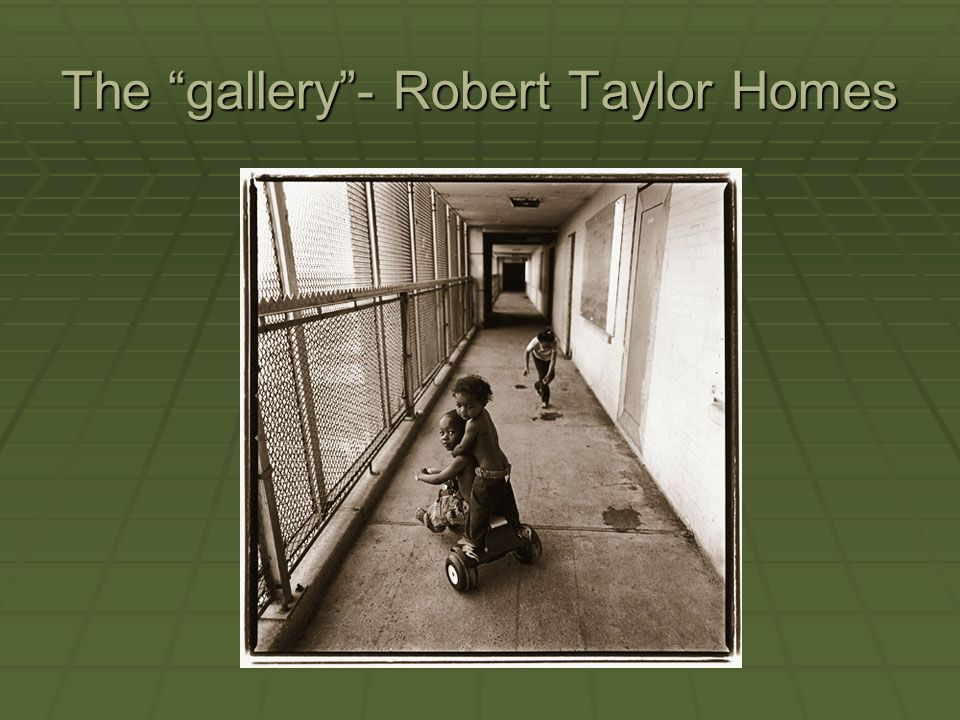 The gallery- Robert Taylor Homes