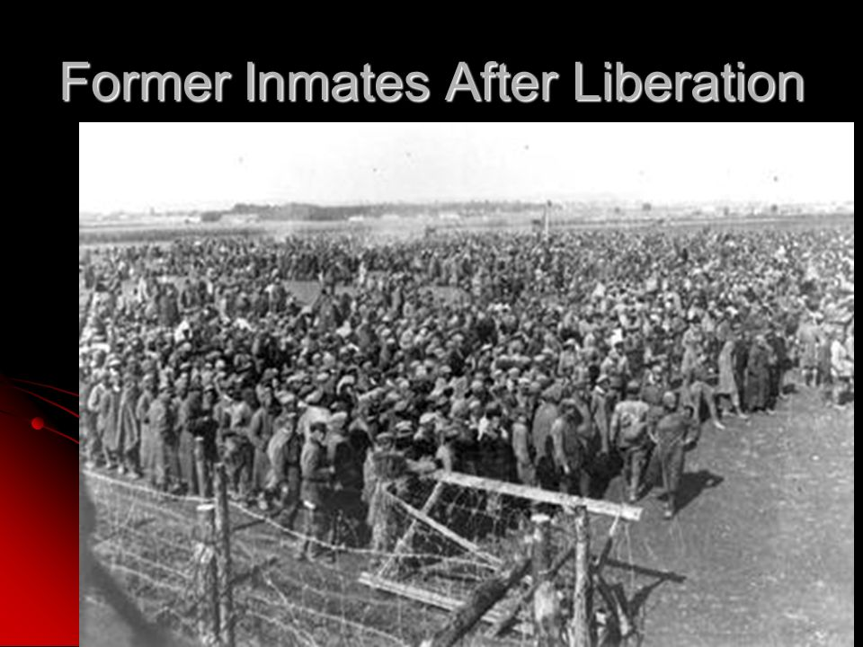 Former Inmates After Liberation