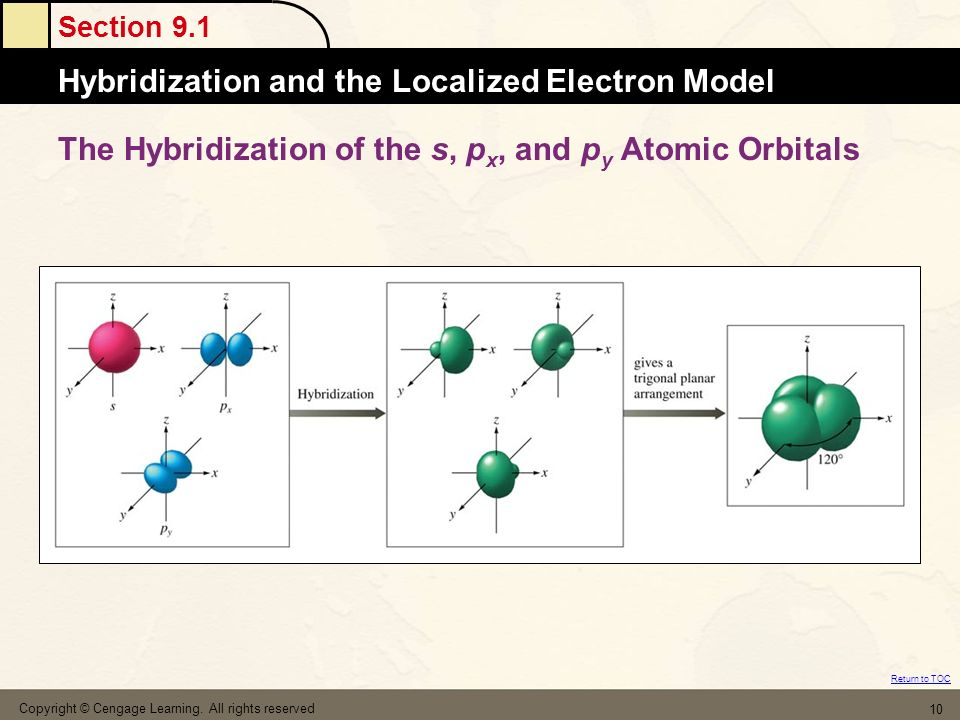 Section 9.1 Hybridization and the Localized Electron Model Return to TOC Copyright © Cengage Learning. All rights reserved 10 The Hybridization of the