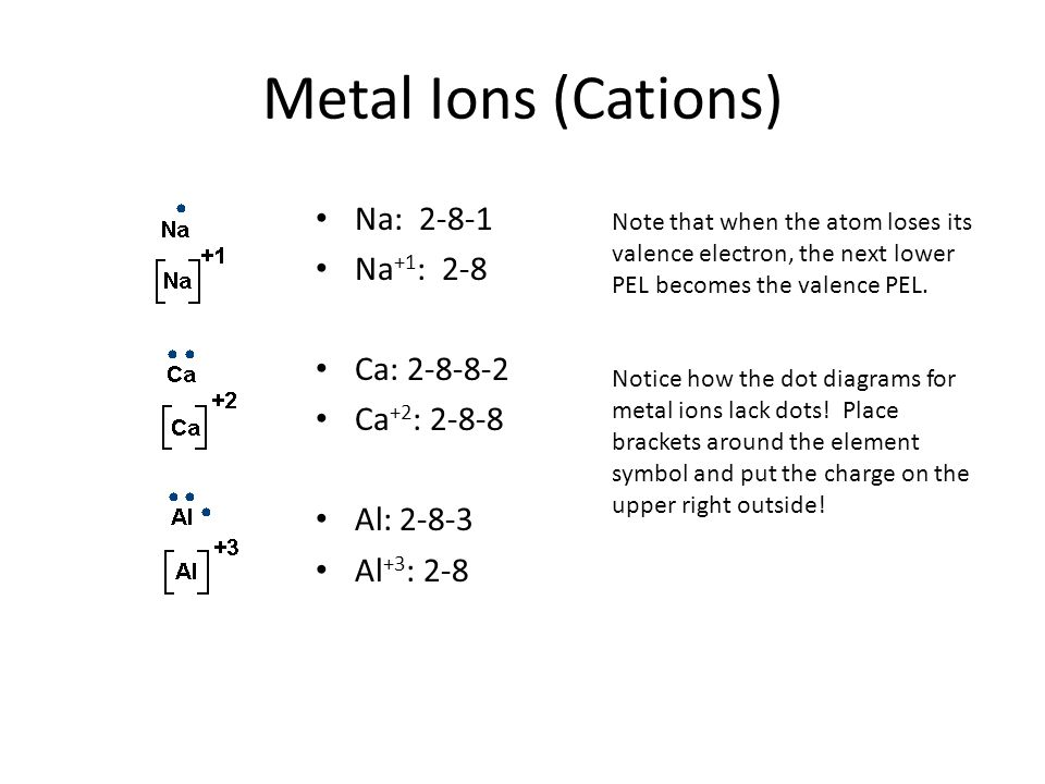 Metal Ions (Cations) Na: 2-8-1 Na +1 : 2-8 Ca: 2-8-8-2 Ca +2 : 2-8-8 Al: 2-8-3 Al +3 : 2-8 Note that when the atom loses its valence electron, the nex