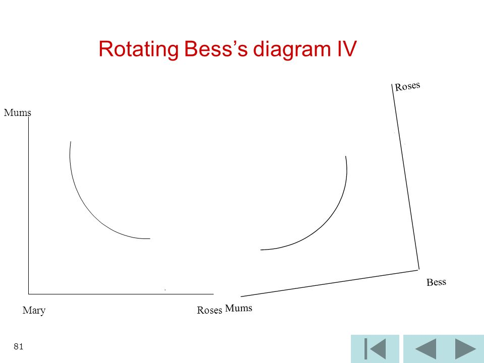 81 Rotating Besss diagram IV Mums Bess Roses