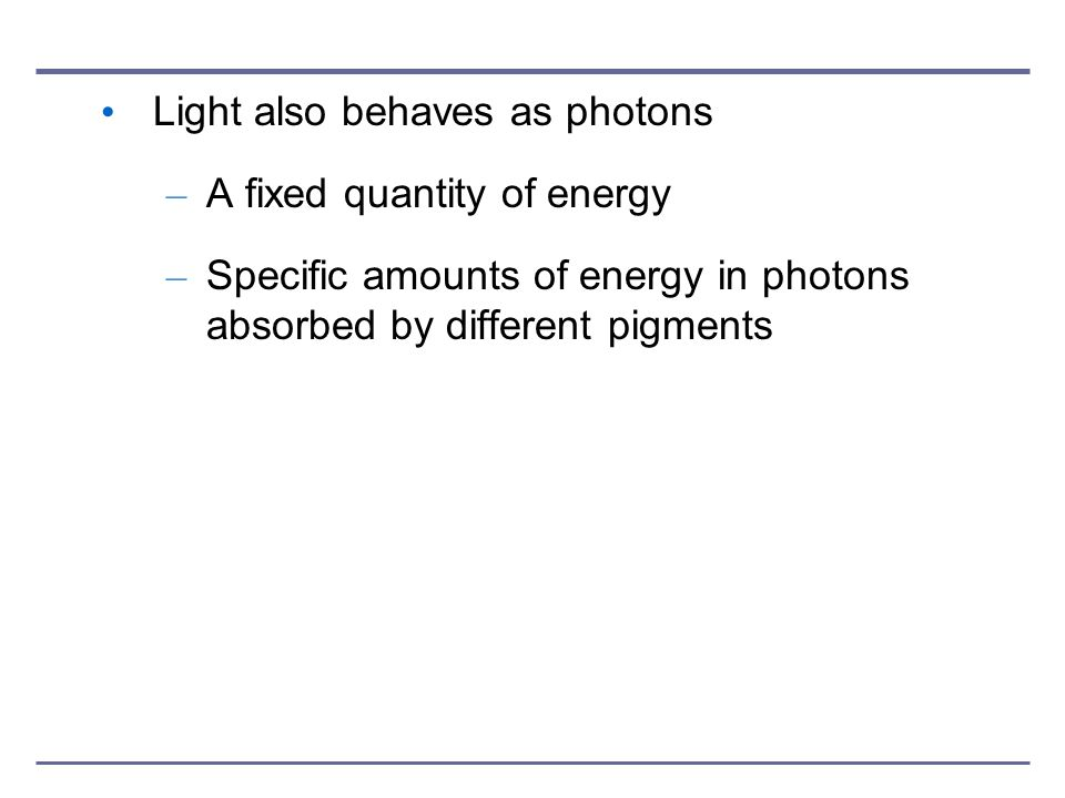 Light also behaves as photons – A fixed quantity of energy – Specific amounts of energy in photons absorbed by different pigments