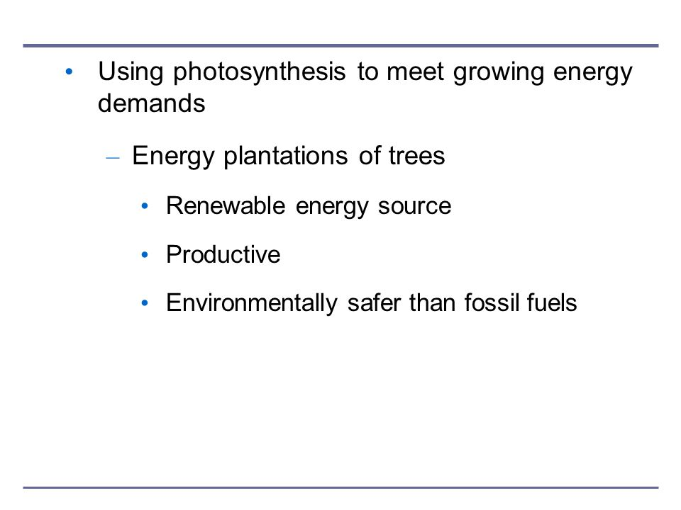 Using photosynthesis to meet growing energy demands – Energy plantations of trees Renewable energy source Productive Environmentally safer than fossil