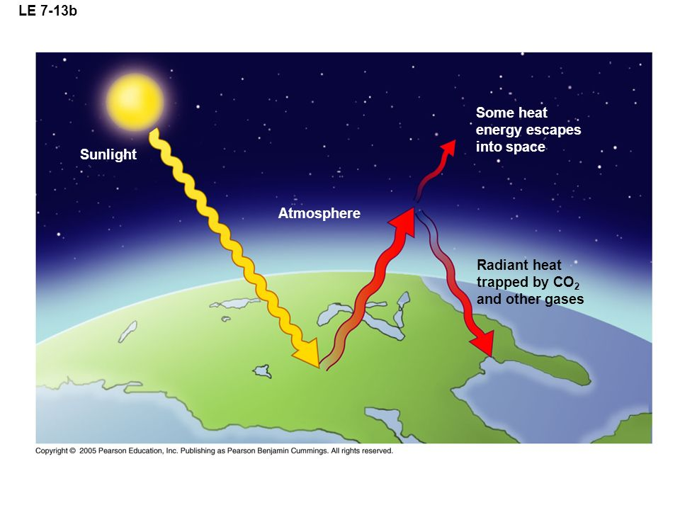 LE 7-13b Sunlight Radiant heat trapped by CO 2 and other gases Atmosphere Some heat energy escapes into space