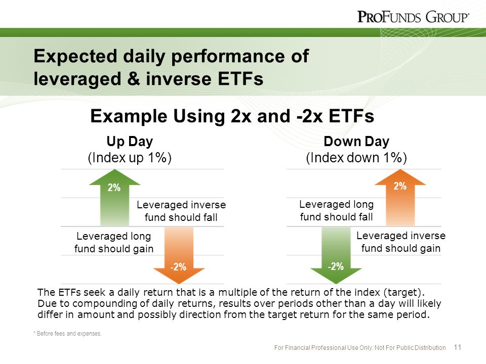 For Financial Professional Use Only: Not For Public Distribution 11 Expected daily performance of leveraged & inverse ETFs * Before fees and expenses.