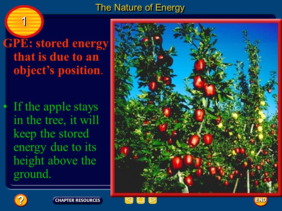 GPE: stored energy that is due to an objects position. The Nature of Energy If the apple stays in the tree, it will keep the stored energy due to its