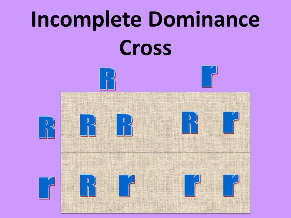 Incomplete Dominance Cross