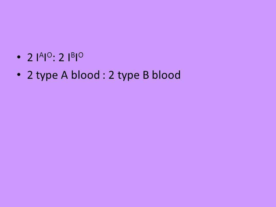 2 I A I O : 2 I B I O 2 type A blood : 2 type B blood
