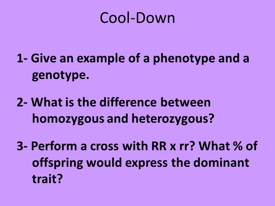 Cool-Down 1- Give an example of a phenotype and a genotype. 2- What is the difference between homozygous and heterozygous? 3- Perform a cross with RR