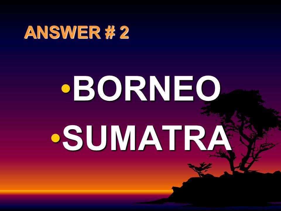 ANSWER # 2 BORNEOBORNEO SUMATRASUMATRA