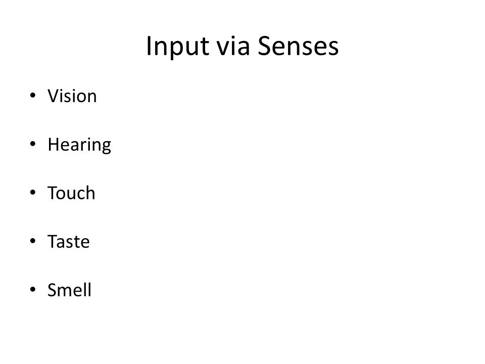 Input via Senses Vision Hearing Touch Taste Smell