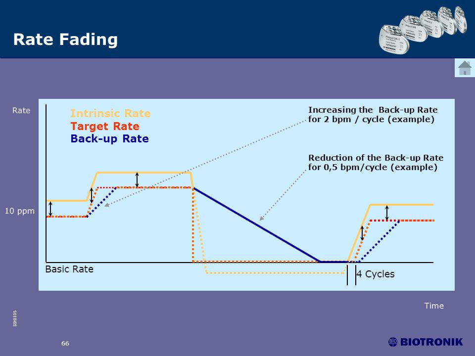 SSt0305 66 Intrinsic Rate Target Rate Back-up Rate Increasing the Back-up Rate for 2 bpm / cycle (example) Reduction of the Back-up Rate for 0,5 bpm/c