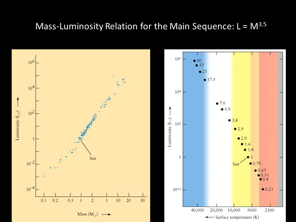 Mass-Luminosity Relation for the Main Sequence: L = M 3.5