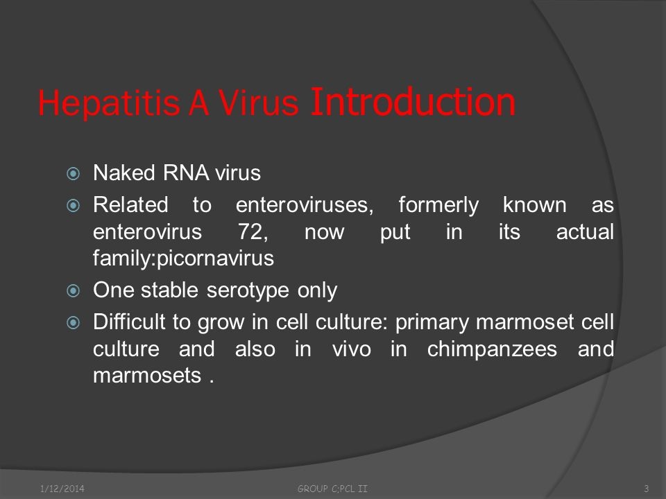 Hepatitis A Virus Introduction Naked RNA virus Related to enteroviruses, formerly known as enterovirus 72, now put in its actual family:picornavirus O