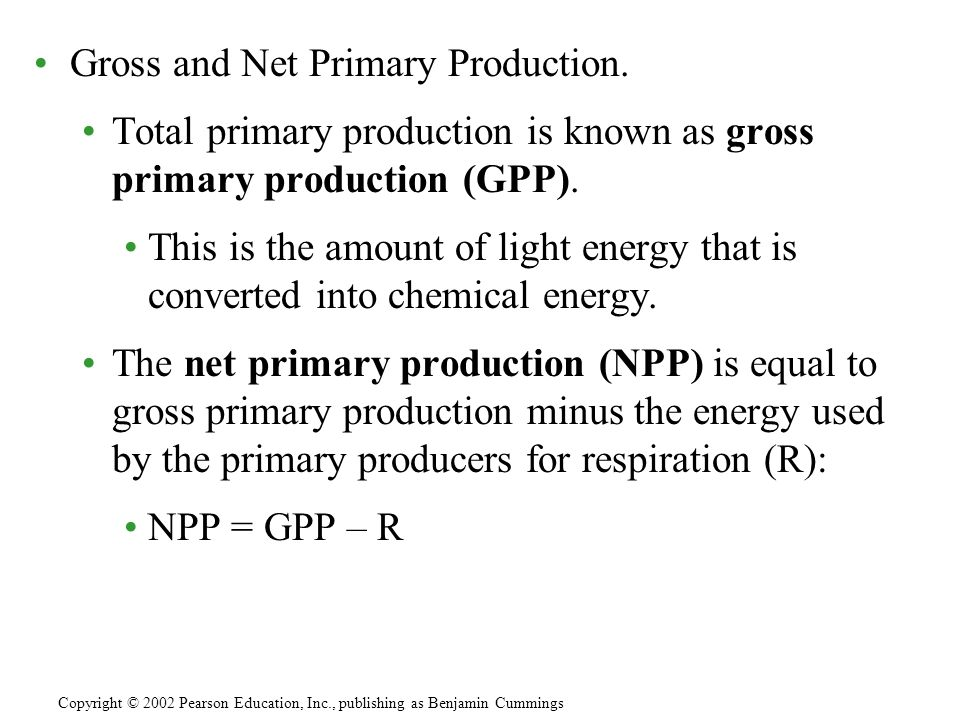 Gross and Net Primary Production. Total primary production is known as gross primary production (GPP). This is the amount of light energy that is conv