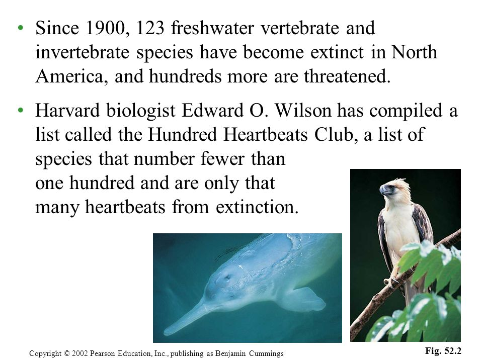 Since 1900, 123 freshwater vertebrate and invertebrate species have become extinct in North America, and hundreds more are threatened. Harvard biologi