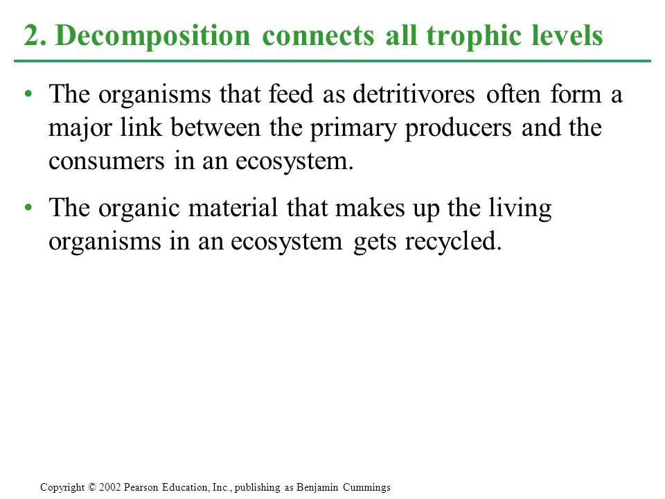 The organisms that feed as detritivores often form a major link between the primary producers and the consumers in an ecosystem. The organic material
