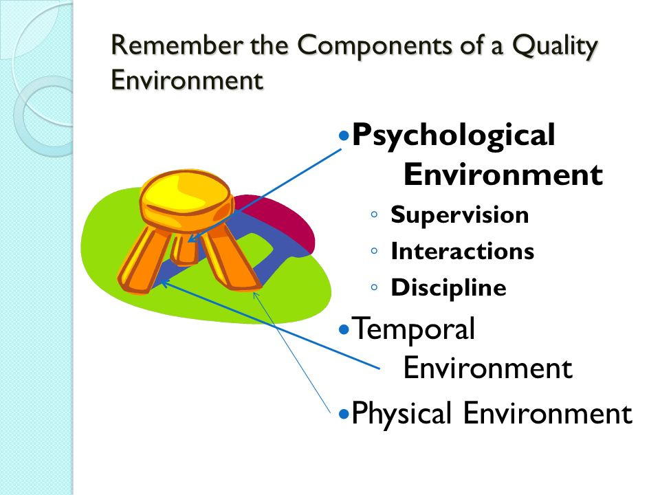 Remember the Components of a Quality Environment Psychological Environment Supervision Interactions Discipline Temporal Environment Physical Environment