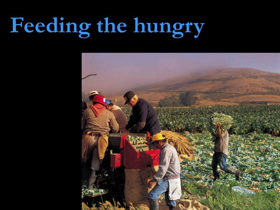 Feeding the hungry