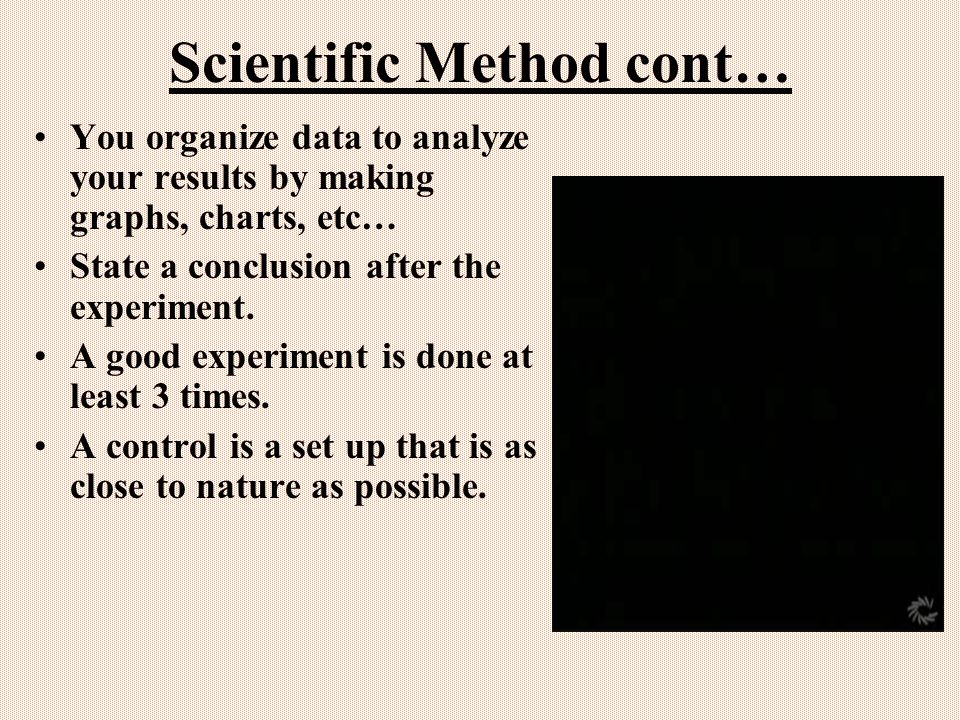 Scientific Method cont… You organize data to analyze your results by making graphs, charts, etc… State a conclusion after the experiment.