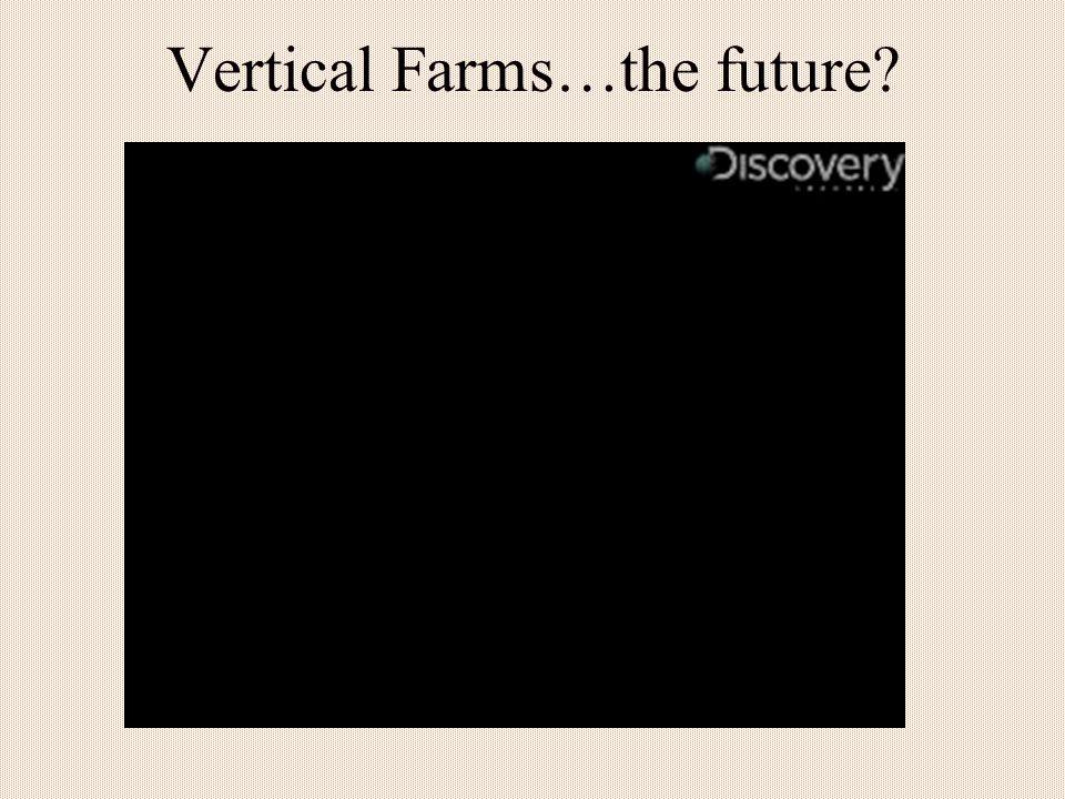 Vertical Farms…the future?