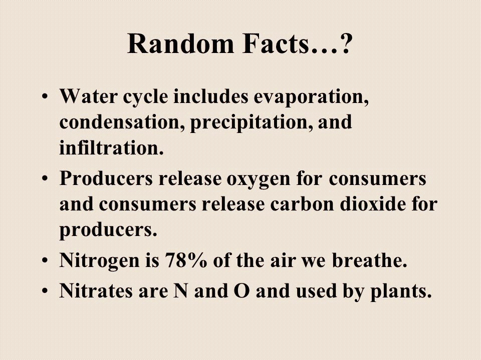 Random Facts….Water cycle includes evaporation, condensation, precipitation, and infiltration.