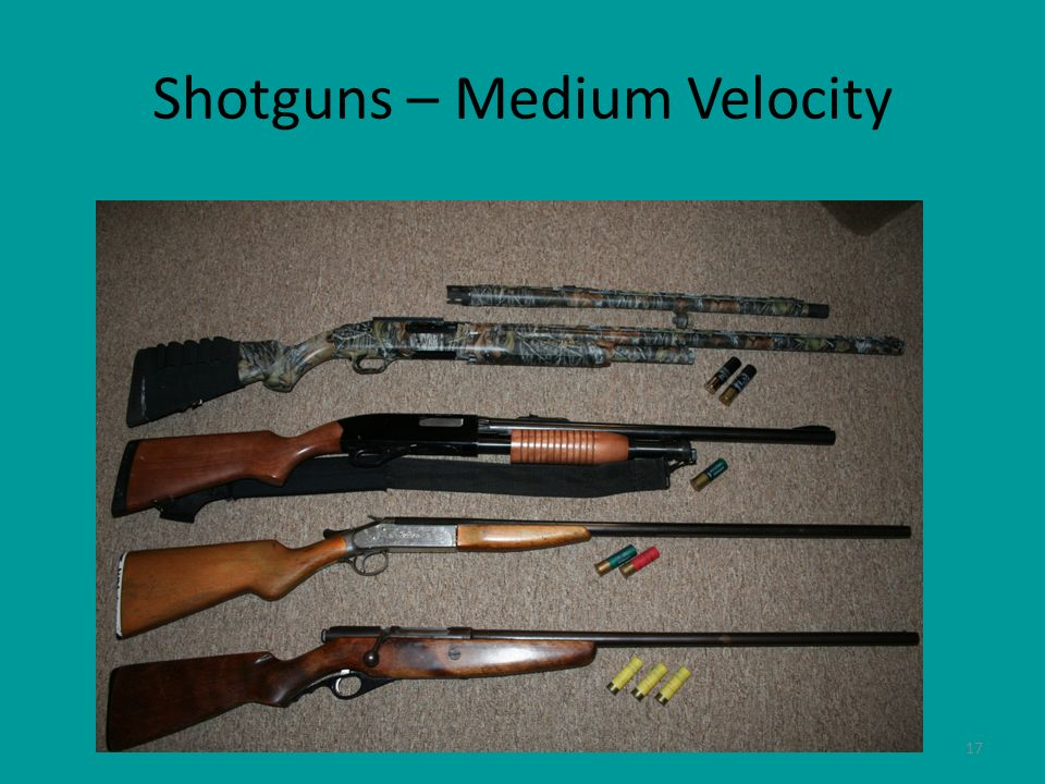 17 Shotguns – Medium Velocity
