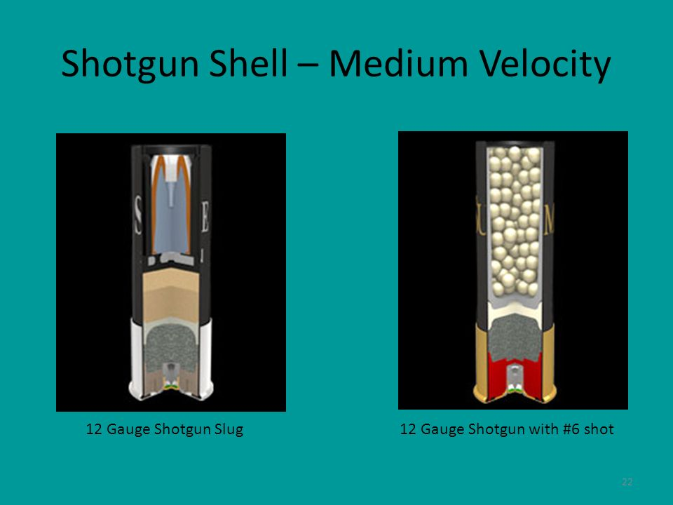 22 Shotgun Shell – Medium Velocity 12 Gauge Shotgun Slug12 Gauge Shotgun with #6 shot
