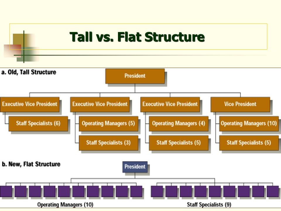 10 Tall vs. Flat Structure