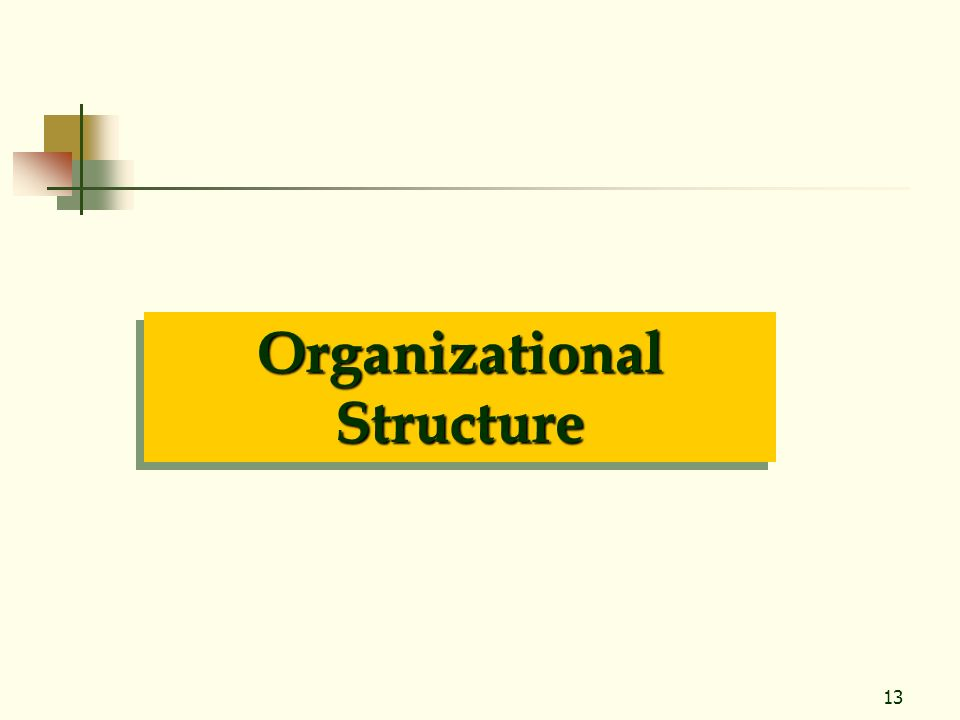 13 Organizational Structure