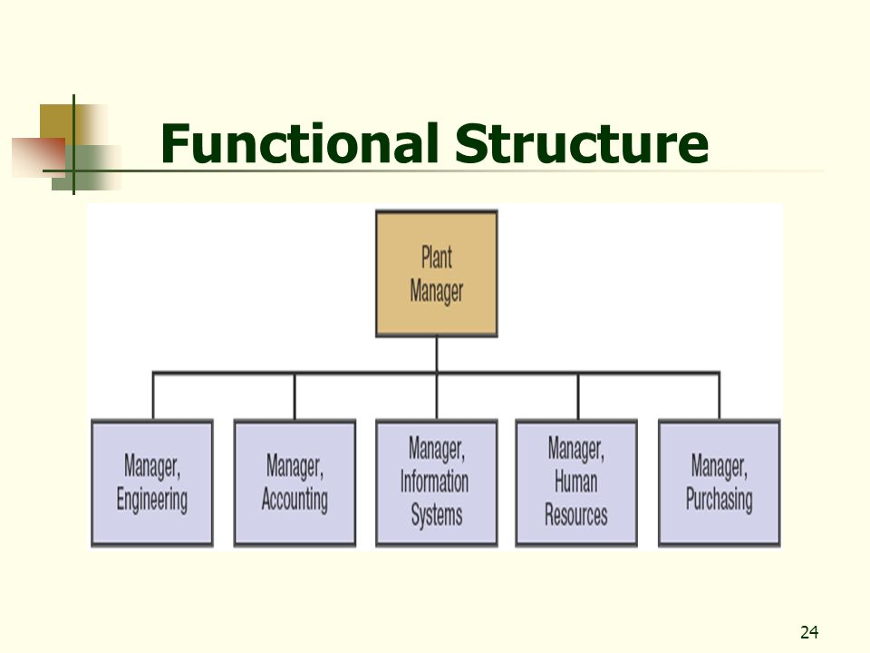 24 Functional Structure