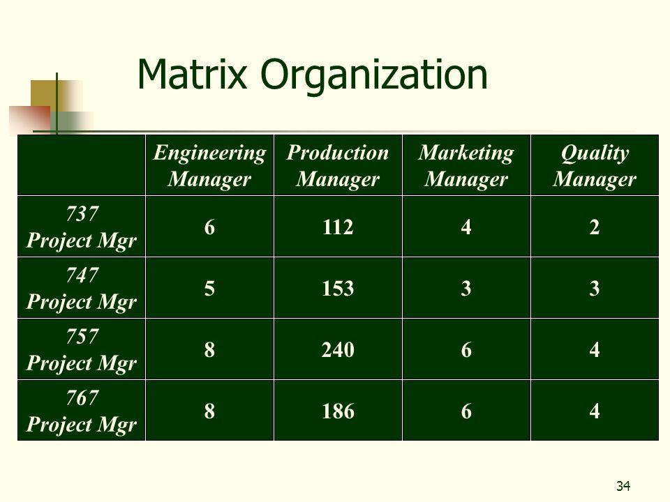 34 Matrix Organization Engineering Manager Production Manager Marketing Manager Quality Manager 757 Project Mgr 824064 767 Project Mgr 818664 737 Proj