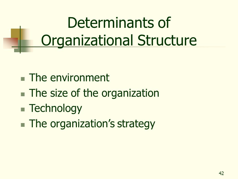 42 Determinants of Organizational Structure The environment The size of the organization Technology The organizations strategy