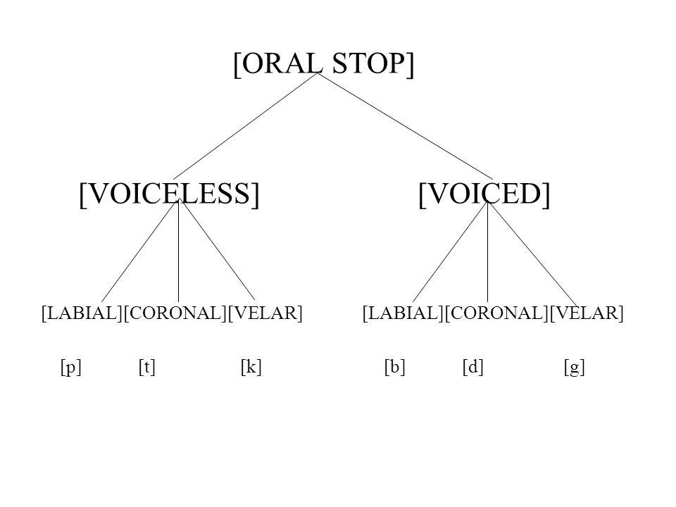 [ORAL STOP] [VOICELESS] [VOICED] [LABIAL][CORONAL][VELAR] [p] [t] [k] [b] [d] [g]