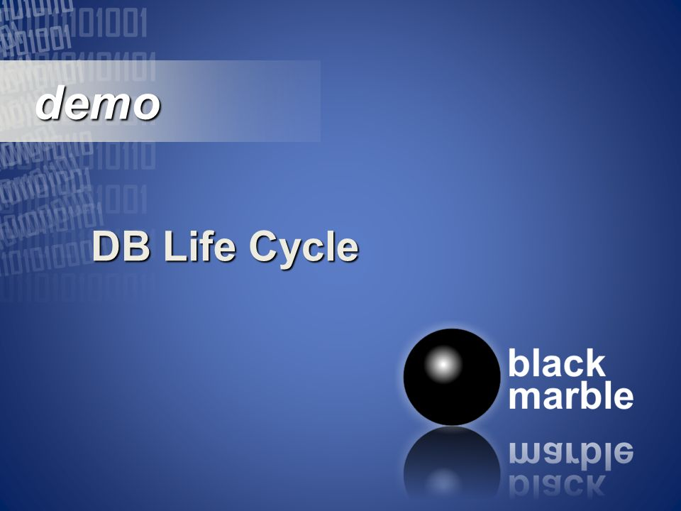 demo demo DB Life Cycle
