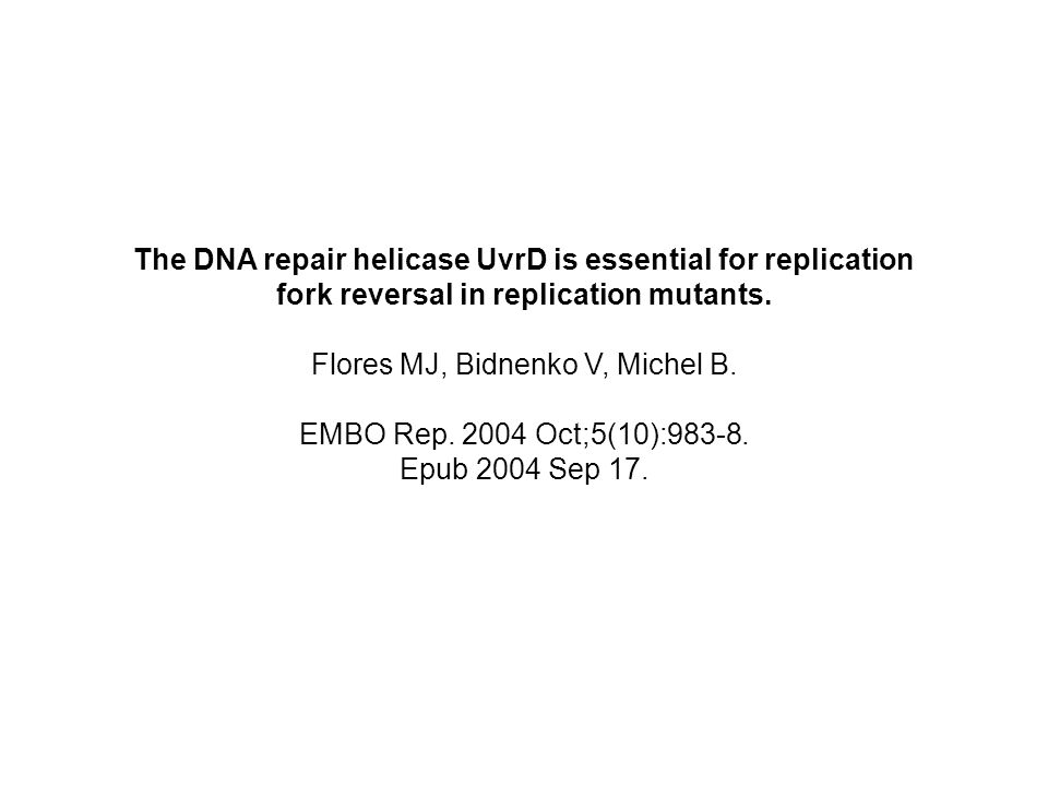 The DNA repair helicase UvrD is essential for replication fork reversal in replication mutants. Flores MJ, Bidnenko V, Michel B. EMBO Rep. 2004 Oct;5(