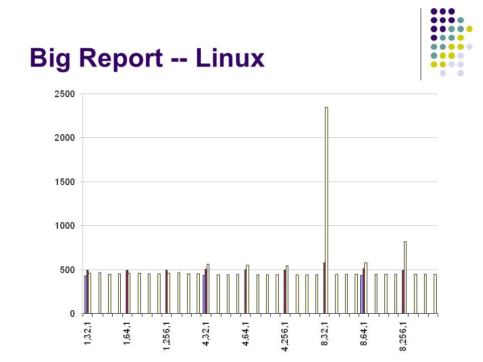 Big Report -- Linux