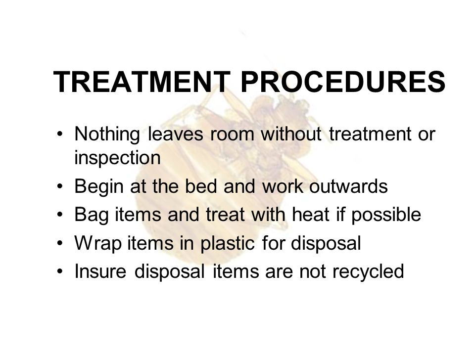 TREATMENT PROCEDURES Nothing leaves room without treatment or inspection Begin at the bed and work outwards Bag items and treat with heat if possible