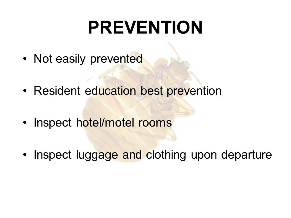PREVENTION Not easily prevented Resident education best prevention Inspect hotel/motel rooms Inspect luggage and clothing upon departure