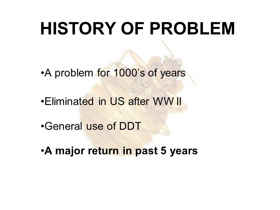 HISTORY OF PROBLEM A problem for 1000s of years Eliminated in US after WW II General use of DDT A major return in past 5 years