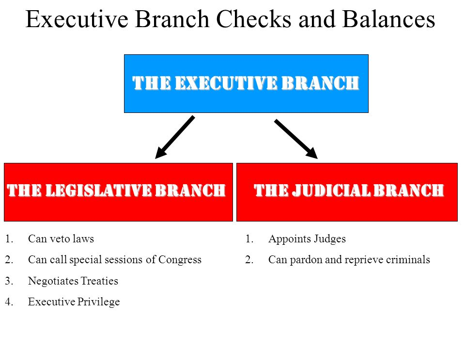 THE EXECUTIVE BRANCH THE LEGISLATIVE BRANCH 1.Can veto laws 2.Can call special sessions of Congress 3.Negotiates Treaties 4.Executive Privilege Execut