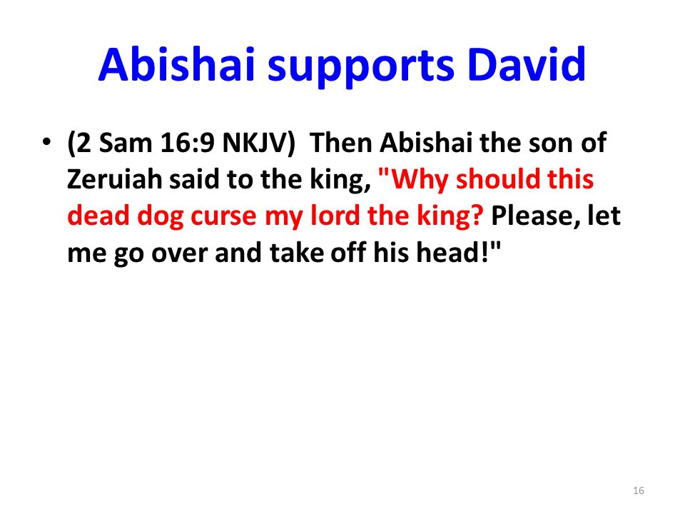 Abishai supports David (2 Sam 16:9 NKJV) Then Abishai the son of Zeruiah said to the king, Why should this dead dog curse my lord the king.