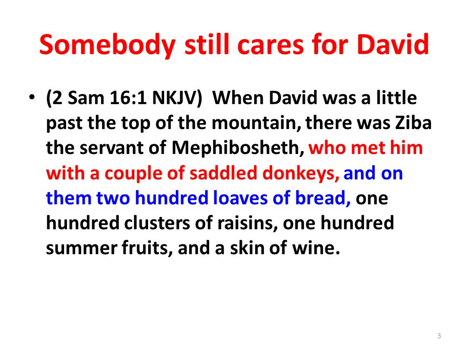 Somebody still cares for David (2 Sam 16:1 NKJV) When David was a little past the top of the mountain, there was Ziba the servant of Mephibosheth, who met him with a couple of saddled donkeys, and on them two hundred loaves of bread, one hundred clusters of raisins, one hundred summer fruits, and a skin of wine.