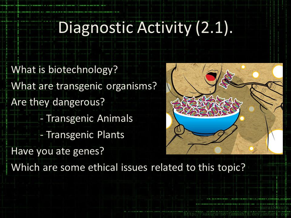 Diagnostic Activity (2.1). What is biotechnology? What are transgenic organisms? Are they dangerous? - Transgenic Animals - Transgenic Plants Have you
