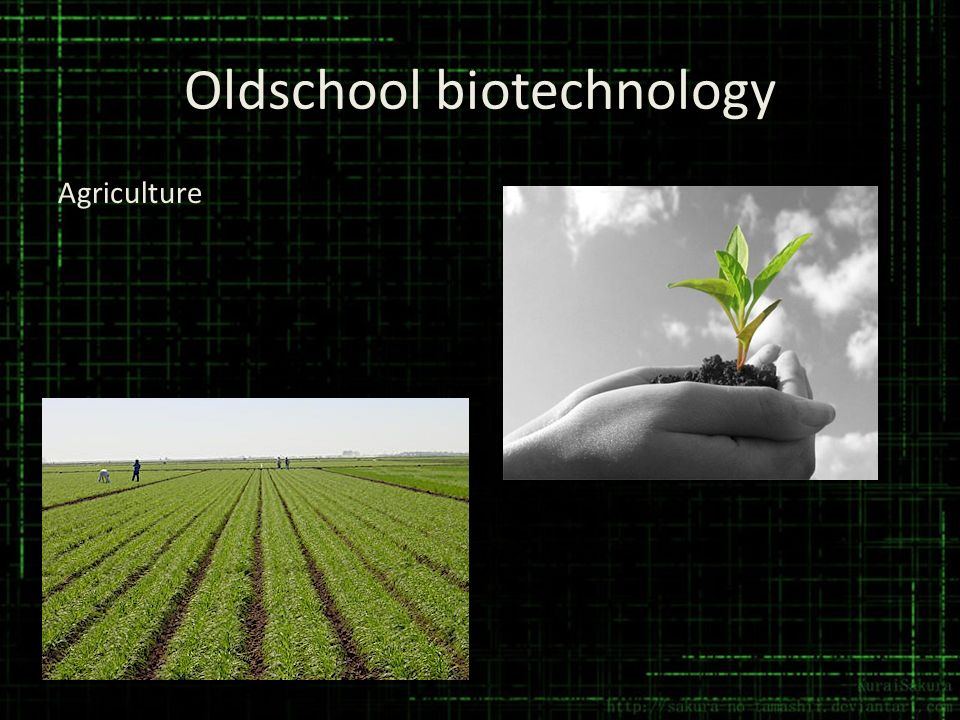 Oldschool biotechnology Agriculture