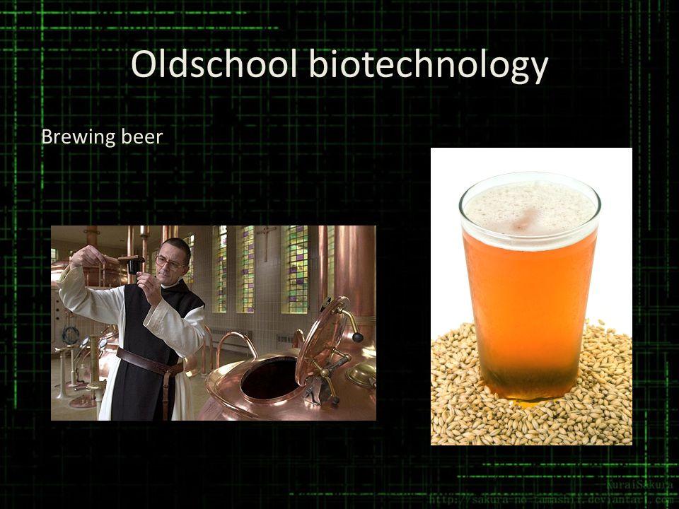 Oldschool biotechnology Brewing beer